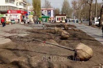В Мелитополе больше не садят тополя
