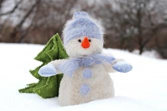 Новый год со снегом и минус 20: синоптик рассказал, какая будет зима фото