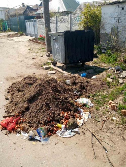 Коммунальщики вывали мусор на дорогу фото