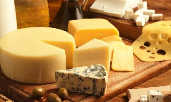 5 главных правил хранения сыра фото