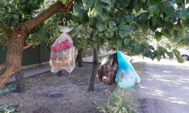 Частному сектору мусорные баки не положены фото