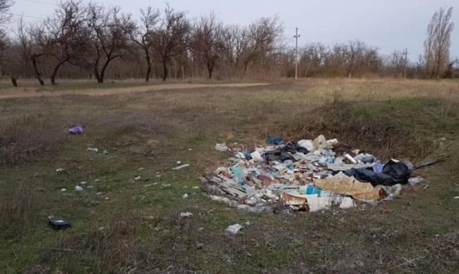 Как решить проблему строительного мусора на территории лесопарка