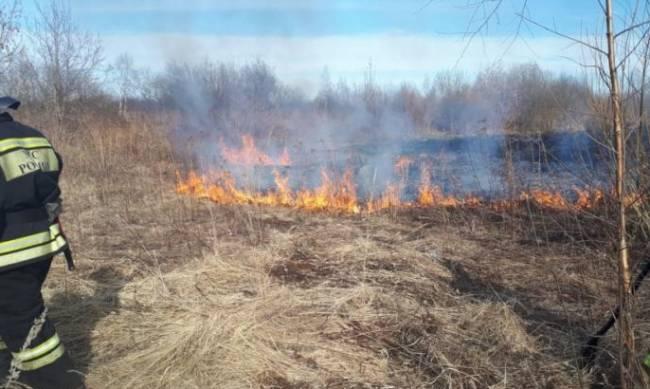 В Украине повысили штрафы для шашлычников и поджигателей травы: сколько придется платить фото