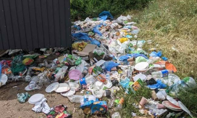 Лесопарк в Мелитополе убрали, но помойка там так и осталась (фото, видео) фото