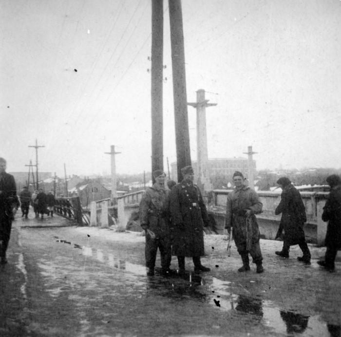Запорожцы фотографировались вместе с «гитлеровцами» во время оккупации – исторический факт