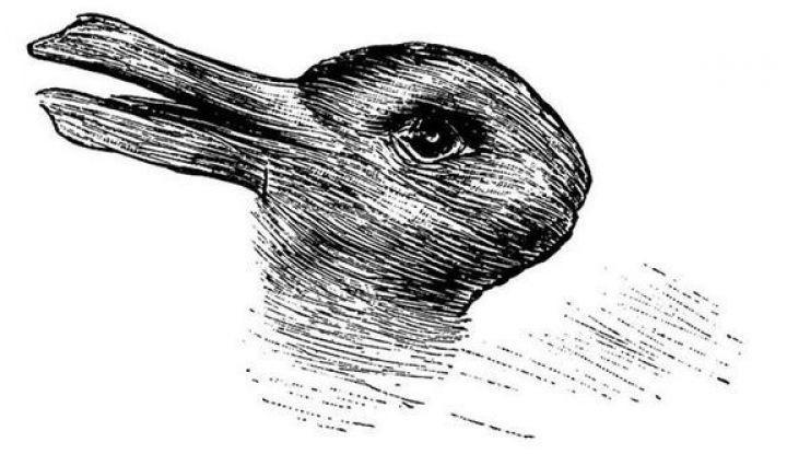 Черный ворон, да не кот. Новая мистическая иллюзия увлекла пользователей