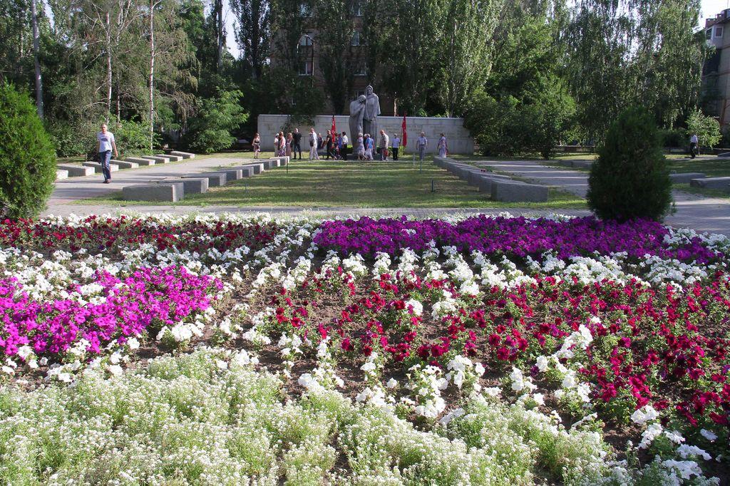 Цветы в мелитополе купить