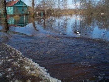 рыбалка в каменке днепровской запорожской области