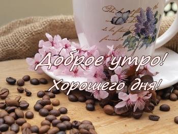 http://www.mv.org.ua/image/news_small/2017/07/12_060000_coffee-beans-759000_960_720.jpg