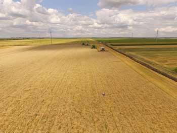Максим Мартынюк: Агробизнес должен учитывать новые факторы влияния