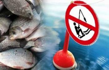 В Запорожской области с 1-го ноября будет запрещено рыбачить на зимовальных ямах