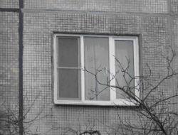 Житель энергодара выбросил женщину из окна 5 этажа.